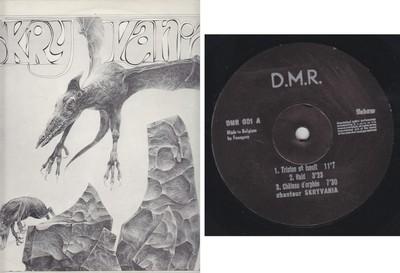 Skryvania, Vinyl LP -1978