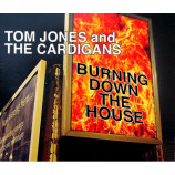 Jones,Tom & The Cardigans - Burning Down The House - CD Maxi Single