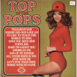 The Top Of The Poppers - Top Of The Pops Vol. 22 - LP