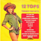 Unknown Artist - 12 Tops - Todays Top Hits - LP