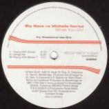 Big Bass & Michelle Narine - What You Do - Vinyl 12 Inch
