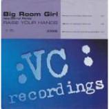 Big Room Girl & Darryl Pandy - Raise Your Hands - Vinyl 12 Inch