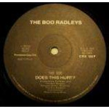 Boo Radleys, The - Does This Hurt? - Vinyl 12 Inch