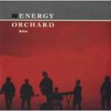 Energy Orchard - Belfast - Vinyl 12 Inch