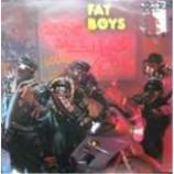 Fat Boys - Coming Back Hard Again - Vinyl Album