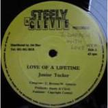 Junior Tucker - Love Of A Lifetime - Vinyl 12 Inch