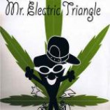 Mr. Electric Triangle - Is The 'erb Dope - Vinyl 12 Inch