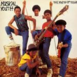 Musical Youth - The Youth Of Today - Vinyl Album