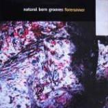 Natural Born Grooves - Forerunner - Vinyl 12 Inch