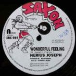 Nerious Joseph - Wonderful Feeling - Vinyl 12 Inch