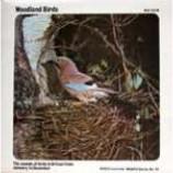 No Artist - Woodland Birds - Vinyl Album