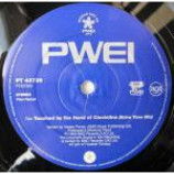 Pop Will Eat Itself - Touched By The Hand Of Cicciolina - Vinyl 12 Inch