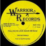 The Naturals & Sadonians - Fallin In Love Again (80 Style) / The Day Will Come (Dub Will Run) - Vinyl 12 In