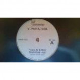 Y Para Sol - Feels Like Sunshine - Vinyl 12 Inch