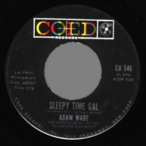Adam Wade - Take Good Care Of Her / Sleepy Time Gal - 45 - Vinyl - 45''