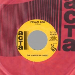 American Breed - Private Zoo / Keep the faith - 45 - Vinyl - 45''