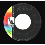 Gary Lewis & The Playboys - Paint Me A Picture / Looking For The Stars - 45