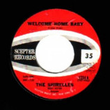 Shirelles - Welcome Home Baby / Mama Here Comes The Bride - 45