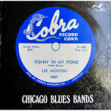 Various – Fishin' In My Pond (Chicago Blues Bands - Various – Fishin' In My Pond (Chicago Blues Bands)