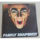 Peter Gabriel - Family Snapshot - 2LP