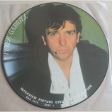 Peter Gabriel - Limited Edition Interview Picture Disc - LP