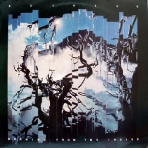 Bauhaus - Burning From The Inside LP - Vinyl - LP