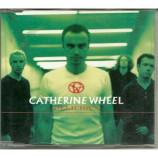 catherine wheel - delicious CDS