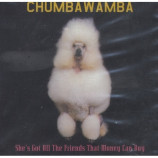 Chumbawamba - She's Got All The Friends That Money Can Buy PROMO