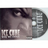 Ice Cube - Why We Thugs Euro prOmO CD