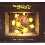 Super Furry Animals - It's Not The End Of The World? CD
