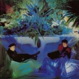 The Associates - Sulk LP