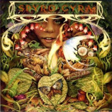 Spyro Gyra ‎ - Morning Dance