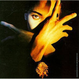 Terence Trent D'Arby ‎ - Terence Trent D'Arby's Neither Fish Nor Flesh