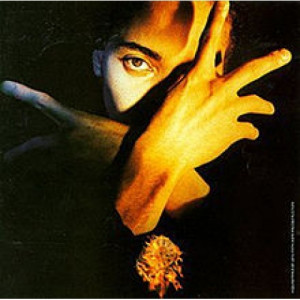 Terence Trent D'Arby  - Terence Trent D'Arby's Neither Fish Nor Flesh - Vinyl - LP