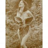 Bjork - Nude - Sepia Print