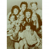 Brady Bunch - Cast - Sepia Print
