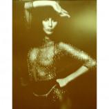 Cher - Fishnet Bodysuit - Sepia Print