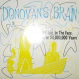 Donovan's Brain - Hit Me, In the Face - 7