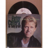 Peter Cetera - The Next Time I Fall (w/ Amy Grant) - 7