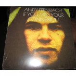 Fernbach Andy - If You Miss Your Connexion