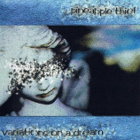 Pineapple Thief - Variations On A Dream