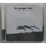 Pineapple Thief - What We Have Sown