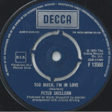 Peter Skellern - Hold On To Love / Too Much, I'm In Love