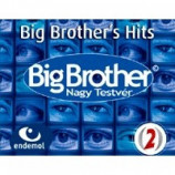 Various Artists - Big Brother's Hits