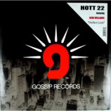 HOTT 22 feat GENE WILLIAMS - PERFECT LOVE - 12 Inch