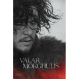 MAXI POSTER (61cm x 91.5cm) - GAME OF THRONES : JON SNOW - Poster