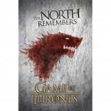 MAXI POSTER (61cm x 91.5cm) - GAME OF THRONES : WOLF - Poster