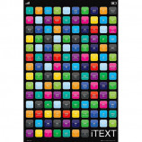 MAXI POSTER (61cm x 91.5cm) - iTEXT : TEXT MESSAGE ABBREVIATIONS - Poster