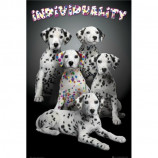 MAXI POSTER (61cm x 91.5cm) - KEITH KIMBERLIN : INDIVIDUALITY (DALMATIANS) - Poster
