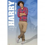MAXI POSTER (61cm x 91.5cm) - ONE DIRECTION : HARRY - Poster